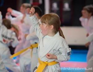 Hofbogen ondernemer: MO martial arts, meisje traint