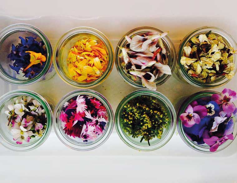 Hofbogen ondernemer: Restaurant De Jong, eetbare bloemen