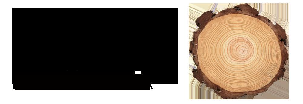 Hofbogen ondernemer: Bsign logo