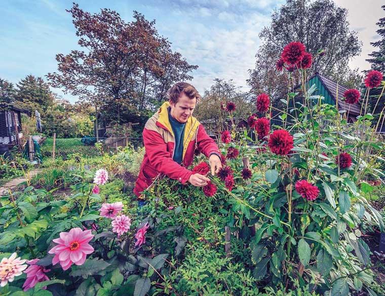Hofbogen ondernemer: Restaurant De Jong, bloementuin