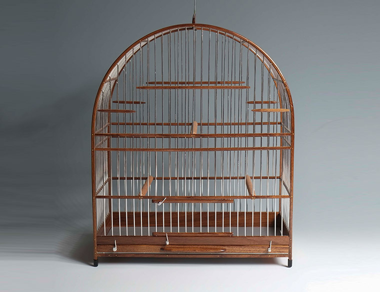 Hofbogen ondernemer: curio&bicudo songbirds and cages, kooi