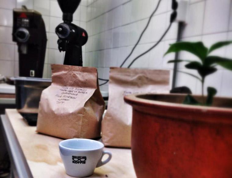 Hofbogen ondernemer: Man met bril koffie, koffieplant